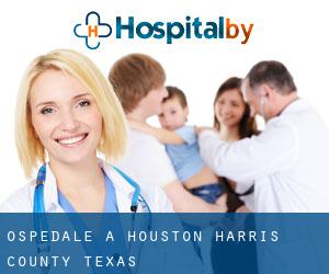 ospedale a Houston (Harris County, Texas)